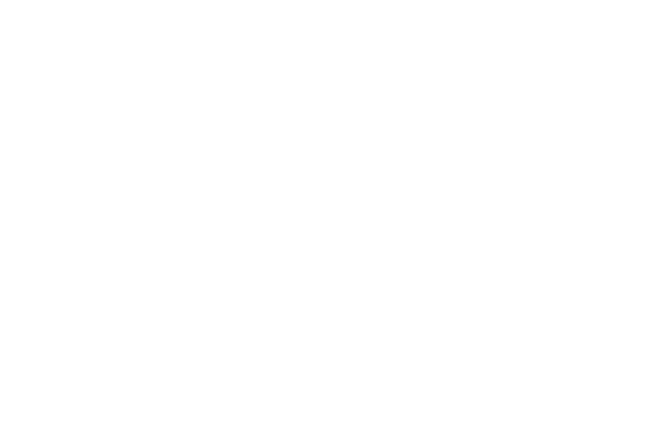 Madison Park School logo design by Flux Visual Communication, Adelaide